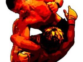 UFC和MMA之间的区别